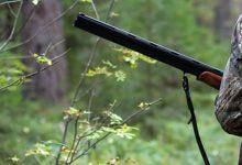 Photo of Colpito per sbaglio da un colpo di fucile, incidente di caccia nel potentino