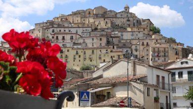 Photo of Comune di Calvello: selezione per il conferimento incarico di Responsabile del Settore Servizi e Programmazione