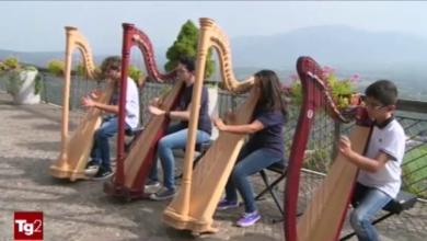 Photo of Dolce Remì e Viggiano. Un nuovo film per il bambino girovago con l'arpa al collo (Video del TG2)
