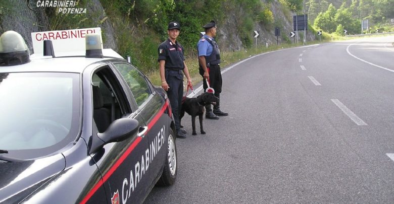 Photo of Si susseguono i controlli dei Carabinieri sulle strade del potentino. Denunciate nove persone all'Autorità Giudiziaria e 5 segnalate alla Prefettura