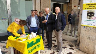 Photo of Coldiretti Basilicata: stop a cibi falsi, raccolti 1,1 milioni di firme