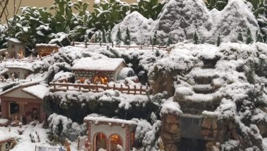 Photo of A Torino sul maxipresepio di una famiglia di Marsico Nuovo scende la neve vera: l'effetto è magico