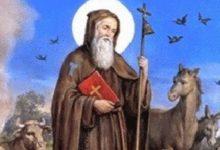 Photo of Sant'Antuono: il Santo del fuoco, degli animali e del Carnevale