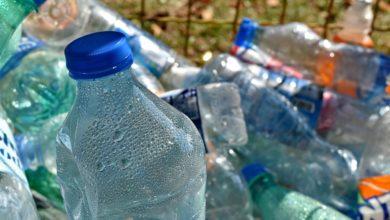"""Photo of Plastic free in Consiglio Regionale, Leggieri: """"Istituzioni diano esempio"""""""