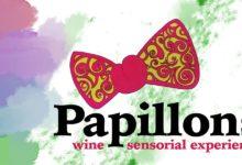 """Photo of Grumento Nova, Giovedi 13 Agosto appuntamento con """"Papillons: Sensorial Experience"""""""