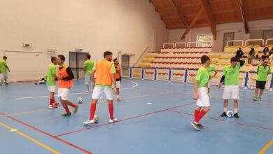 Photo of Prima partita in A2 dell'Orsa Viggiano: un 3-3 spettacolare! I video della partita