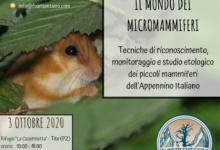 Photo of Giornata formativa sulla biodiversità dei micromammiferi dell'Appennino italiano