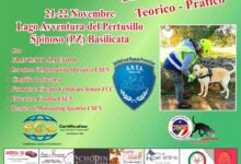 Photo of Spinoso, il 21 e il 22 Novembre un evento formativo sul Mantrailing